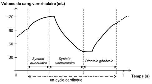calcul debit cardiaque