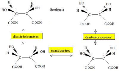 c9629c04fc8 L acide tartrique possède deux atomes de carbone asymétrique. - La molécule  représentée n est pas chirale. Vrai. Elle possède un centre de symétrie.